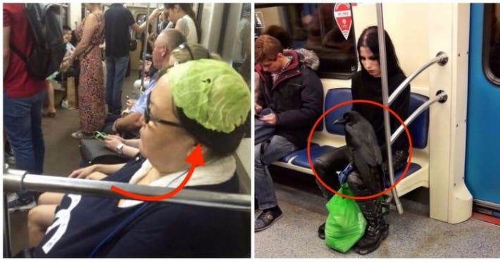 Photo : 30 weird and funny sights on the subway